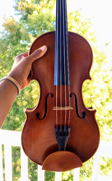Holding my viola on the balcony, treetop in background.